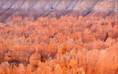 Zion & Bryce Canyon NPs