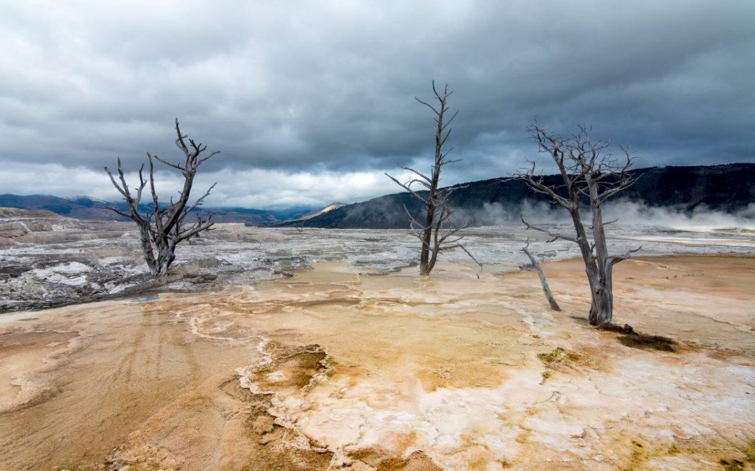 Yellowstone // day 2 [USA 2016 – 15/20]